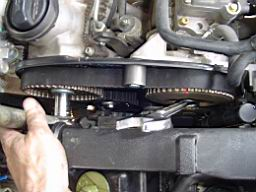 tdi_a4_alk_timing_belt_110.jpg