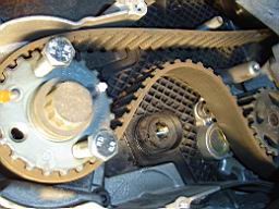 tdi_a4_alk_timing_belt_56.jpg