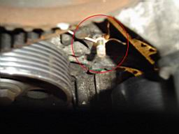 tdi_timing_belt_cover_02.jpg